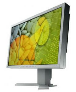 Monitoare Second Hand, Eizo S2202W monitor 22' inch wide